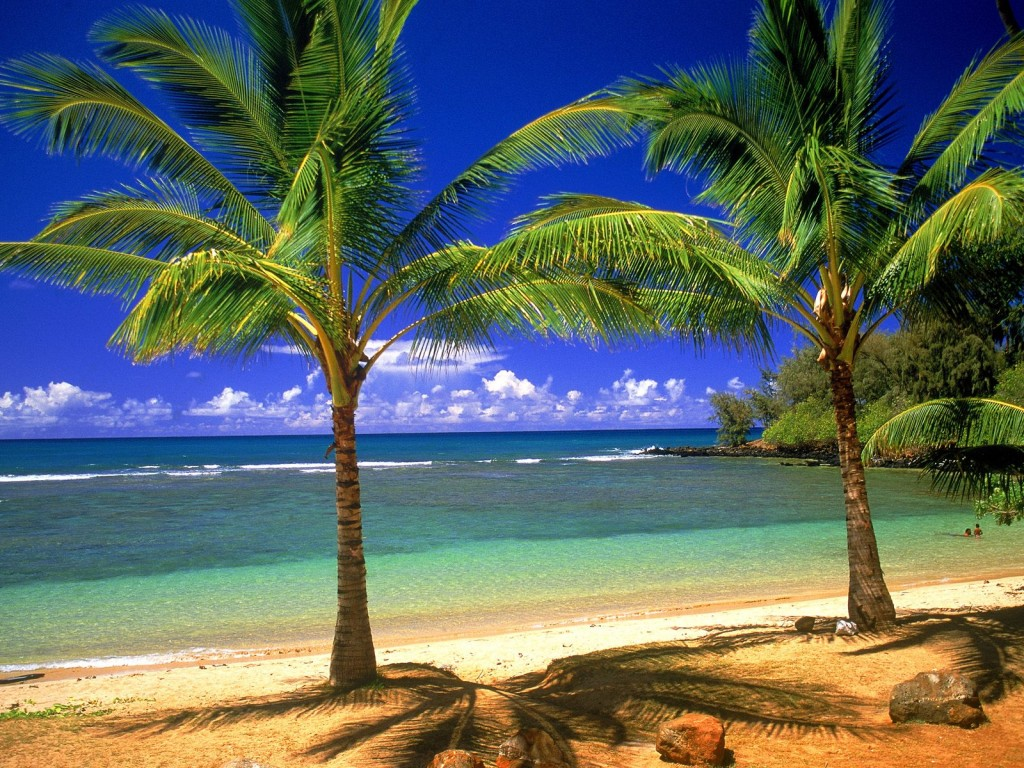 Massive Open Online Course: Hawaii - Learning, Building Community and New Skills online
